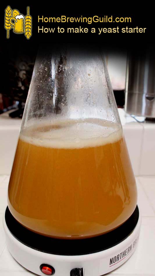 How to make a home brewing yeast starter